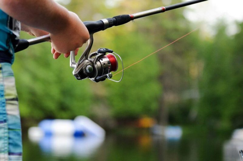 Cara Membuat Umpan Mancing Ikan Mas Sendiri dengan Mudah